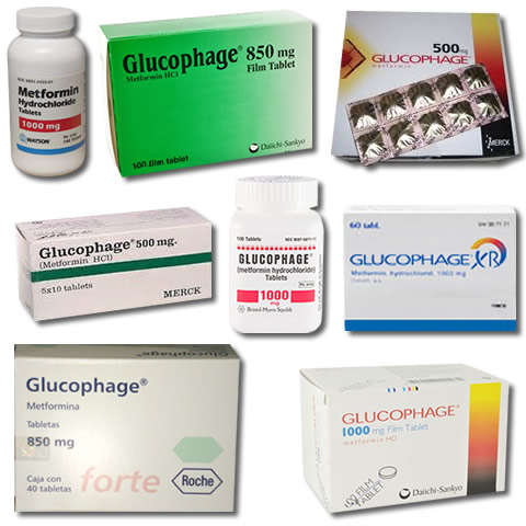 Glucophage Xr Dosage For Weight Loss