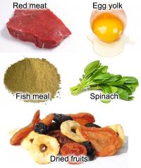 Foods most rich in iron